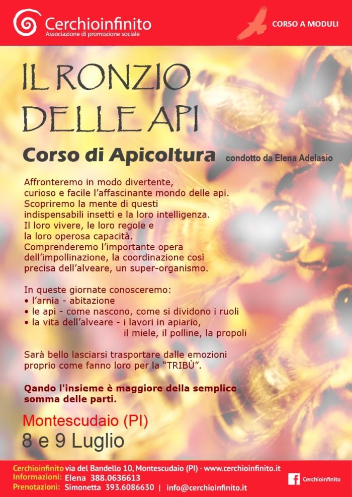 Locandina_A3_API_8_9_Luglio